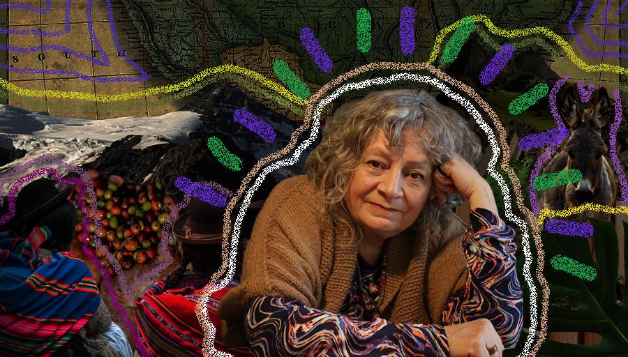 es un collage, al centro está la fotografía de Rita Segato y detrás de ella hay un mapa de Sudamérica, mujeres bolivianas y un burrito en el que subía la montaña